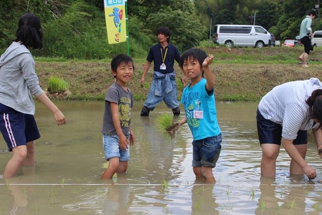 画像:苗を植える子どもたち