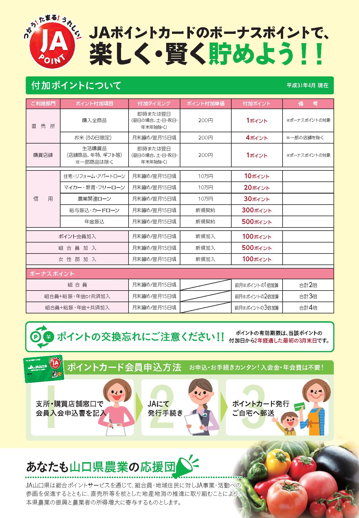 画像:JAポイントサービスのチラシ-ウラ