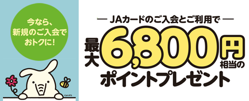 画像:JAカード新規入会キャンペーン(2020年3月末まで)
