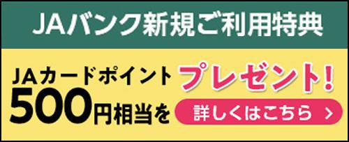 画像:新規ご利用特典 JAカードポイント500円相当プレゼント